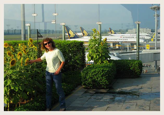 Сингапурский аэропорт. Singapore Airport.